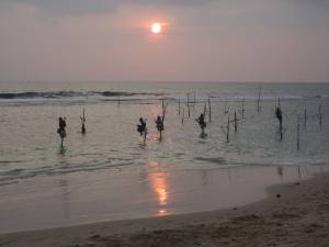 Fishermen at sunset, south of Galle