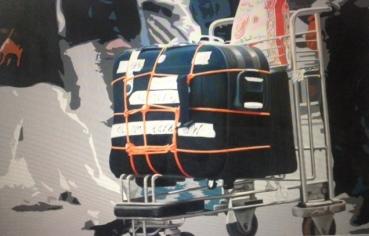 Subodh Gupta trolley